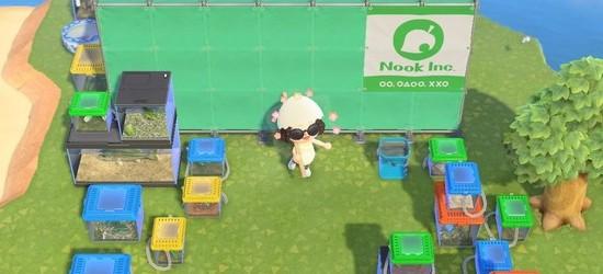 休闲暖心游戏《集合啦!动物森友会》实用小贴士