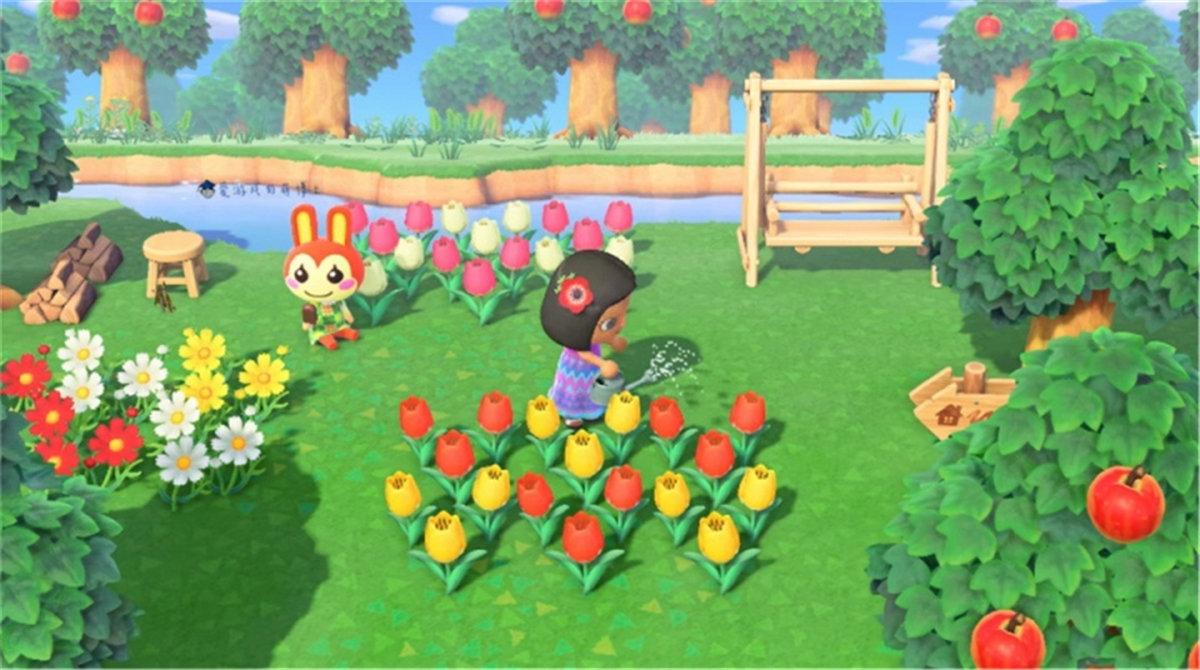集合啦动物森友会怎么种花 教你如何种出杂交花