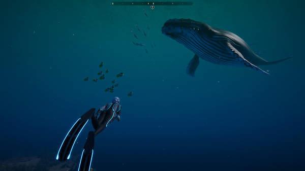 探索神秘海洋世界《深海超越》新实际演示公布